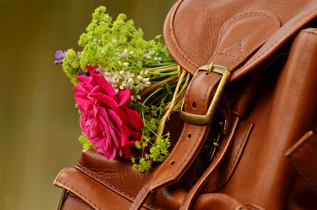 kytička v batohu