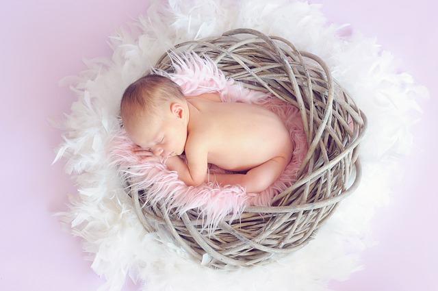 miminko v hnízdě.jpg
